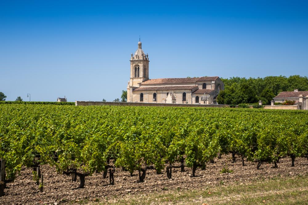 Route des Vins Mâconnais-Beaujolais